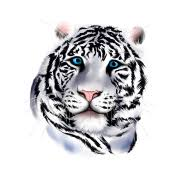 white tiger t shirt spreadshirt