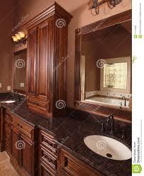 Luxury Home Ideas by Luxury Home Bathrooms Bibliafull Com