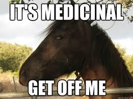 High Horse Meme - high horse memes quickmeme