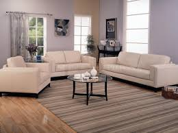 White Leather Couch Living Room Simple And Neat Decorating Ideas Using Rectangular Brown Rugs And