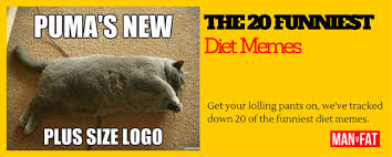Fat Memes - the 20 funniest diet memes plus cats man v fat