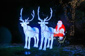 Zoo Lights by Zoo Lights At Lincoln Park Zoo The Chicago Bucket List