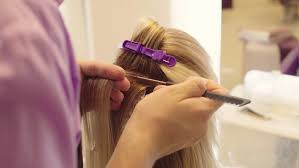 colors are presented original hair color blue pink purple