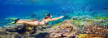 Snorkel gear for travel the ultimate guide