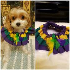 mardi gras collar etsy check out this item in my etsy shop https www etsy listing
