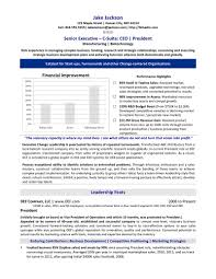 Strategy Resume Ceo Chief Executive Officer Resume Sample