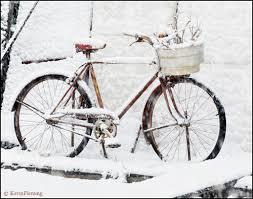 gifts 100 antique bike print cape gazette