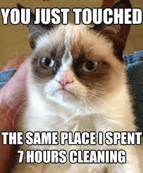 Misunderstood Spider Meme 16 Pics - the best of grumpy cat meme