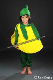 Halloween Costumes Rent Kids Fancy Dress Costumes Rentsake Pune Hire Fancy Dress