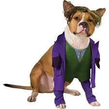 Jason Halloween Costume Party Joker Dog Costume Party 14 99 Halloween Costumes