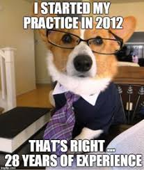 Dog Lawyer Meme - i m feeling like this and i m still 14 months away from the bar my