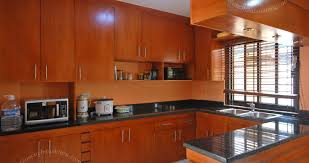 engaging model of kitchen cabinet glass doors brilliant kitchen