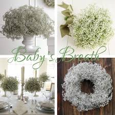 Fake Baby S Breath Baby U0027s Breath First Thought Pretty Or Cheap Weddingbee
