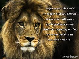 quotes about heart strength beautiful lion quotes quotesgram quotes about lions odeon