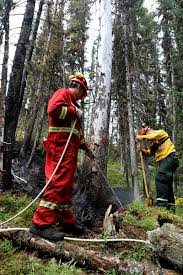 Wildfire Parks Canada by Update July 24 2017 Verdant Creek Wildfire Banff National Park