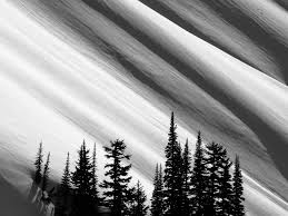 minimalist outdoor photography in black u0026 white enlight leak
