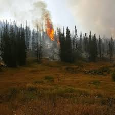 Colorado Wildfire Status by Latest Updates On The Deep Creek Fire Burning In West Routt County