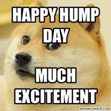 Happy Hump Day Memes - hump day