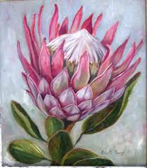 protea flower king protea oilpainting by r visage flowers