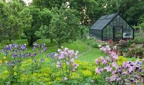 the greenhouse effect protect your plants this winter garden