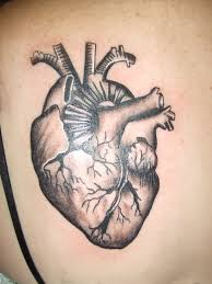 pictures anatomical heart tattoo designs human anatomy diagram