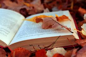wallpaper books texts leaves autumn foliage pages hd