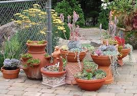 Potted Garden Ideas Container Gardening Ideas For Small Gardens 161 Hostelgarden Net