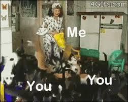 You Me Meme - me you funny gif wifflegif
