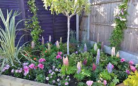 How To Design Your Backyard How To Design Your Garden Solidaria Garden