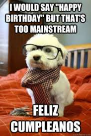 Happy Birthday Memes - happy birthday meme dog with birthday wishes for friends and family