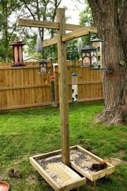backyard bird feeder station made from pvc pipe and located in a