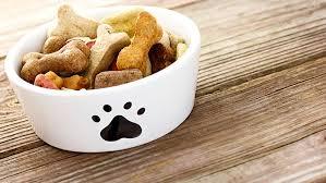 chien cuisiné la meilleure nourriture pour chien et