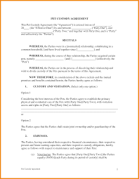25 Professional Agreement Format Examples Basic Visitation Schedule Sample Divorce Mediation Agreement