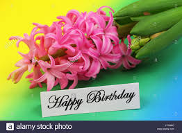 happy birthday card with pink hyacinth flower on colorful