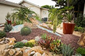 7 best rocks to pair with succulents southwest boulder u0026 stone