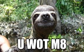 Sloth Jokes Meme - british memes 22 photos thechive