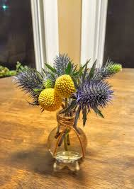 Billy Balls Billy Balls And Blue Thistle Quick And Easy Arrangement U2014 That