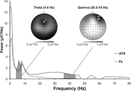 prefrontal oscillations during recall of conditioned and