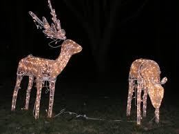 lighted reindeer stupefying christmas lighted reindeer decorations family animated