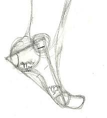 Anatomy Of A Foot How To Draw A Foot 2 By Theclockworkkid On Deviantart