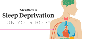 Picture Human Body 11 Effects Of Sleep Deprivation On Your Body