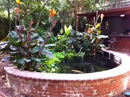 Build Backyard Pond Build Up Bricks Or Stone Around The Pond So You Dont Have To Dig