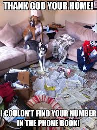 Dog Phone Meme - thank god your home we couldn t find your number in the phone