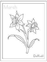 march daffodil flower coloring page flower coloring pages of