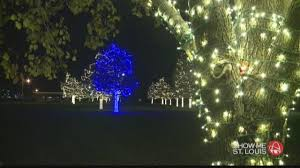 ksdk com hey heidi what u0027s the significance of the blue tree in