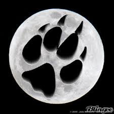 wolf paw picture 128972943 blingee com