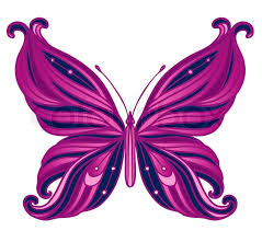 pink butterfly on white stock vector colourbox