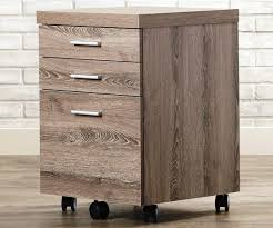 Rolling Storage Cabinet The New Fuss About Rolling Storage Cabinet Quickinfoway Interior