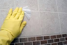 Black Mould In Bathroom Dangerous Is Mold In My Shower Dangerous Hunker