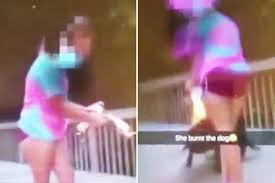 Hit The Floor Aerosol Can Dance - shocking moment teen is filmed setting a dog on fire with an
